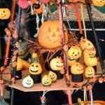 初心者でも簡単にできる!ハロウィン用かぼちゃランタンの作り方と買うならどこで販売?
